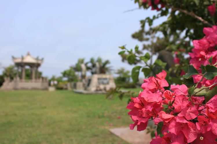 石垣島「唐人墓」の花