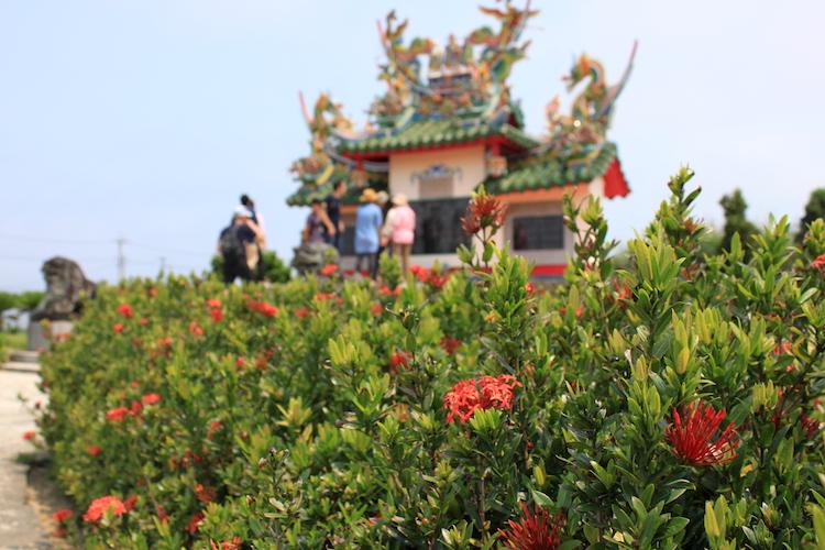 唐人墓と花