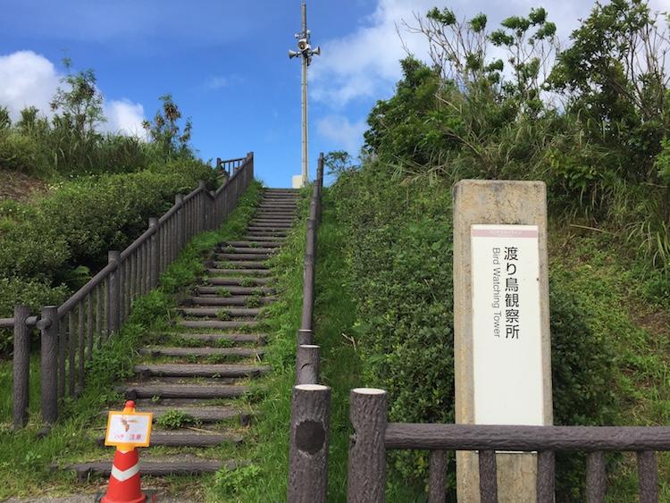 渡り鳥観測所の階段