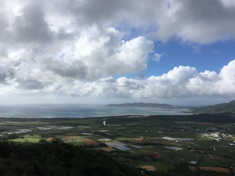 渡り鳥観測所からの眺望