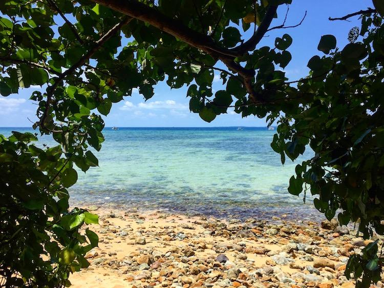 沖縄や石垣島にプチ移住!現地ブロガーがリゾートバイトの求人サイトを2つ紹介!