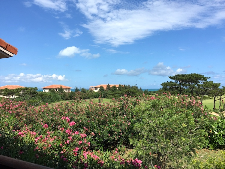 ニラカナイ小浜島の眺め