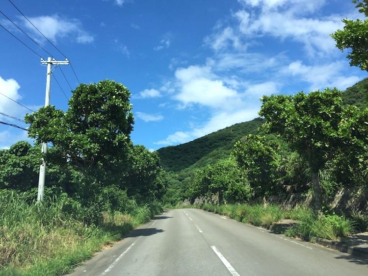 平久保崎灯台への道