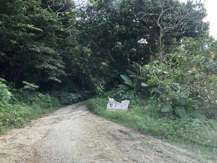 石垣島の草ぼうぼうの入口