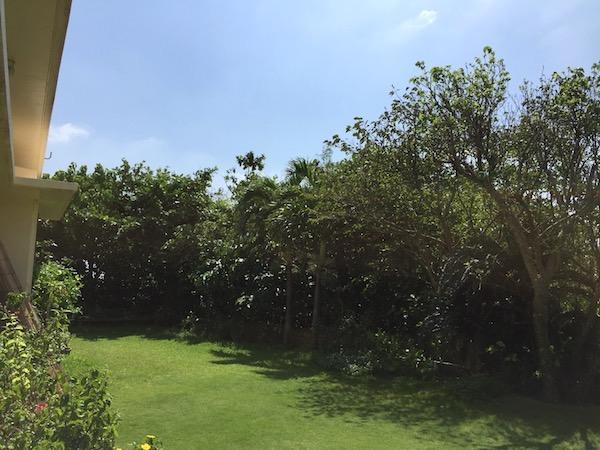 石垣島の旬家ばんちゃんの庭