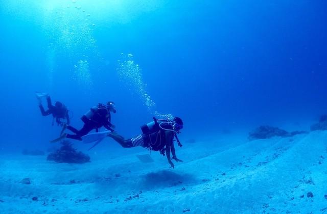 石垣島体験ダイビング専門